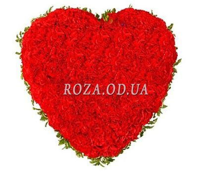 """""""Heart of 101 red carnations"""" in the online flower shop roza.od.ua"""
