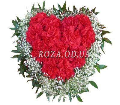 """""""Серце з гвоздик"""" в интернет-магазине цветов roza.od.ua"""