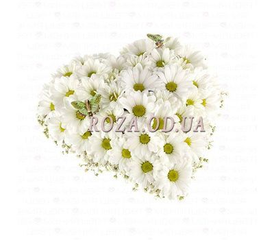 """Heart of chamomiles"" in the online flower shop roza.od.ua"