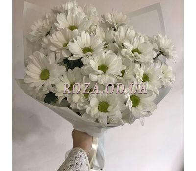 """Bouquet of 5 chamomile chrysanthemums 1"" in the online flower shop roza.od.ua"