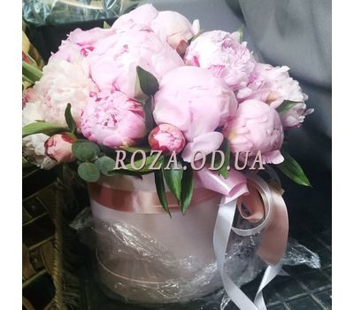 """Chic Peonies in a Box - 3"" in the online flower shop roza.od.ua"