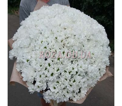 """101 white chrysanthemum - 2"" in the online flower shop roza.od.ua"