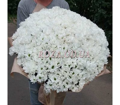 """101 white chrysanthemum - 3"" in the online flower shop roza.od.ua"