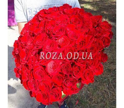 """101 красная роза 70 см - вид 6"" в интернет-магазине цветов roza.od.ua"