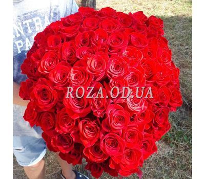 """101 красная роза 70 см - вид 7"" в интернет-магазине цветов roza.od.ua"