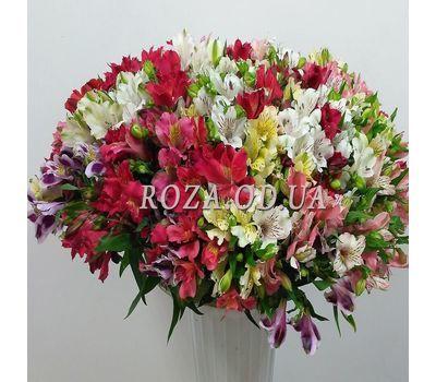"""101 multi-colored alstroemerias 1"" in the online flower shop roza.od.ua"