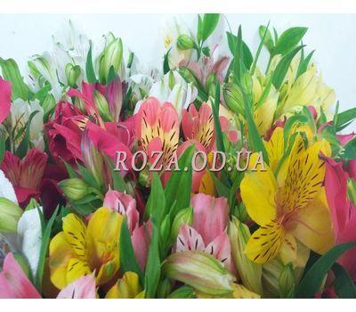 """101 multi-colored alstroemerias 5"" in the online flower shop roza.od.ua"