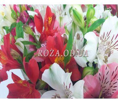 """101 multi-colored alstroemerias 6"" in the online flower shop roza.od.ua"