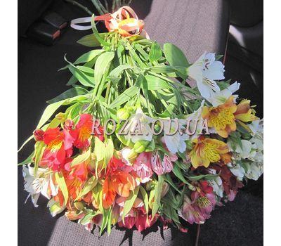 """15 alstroemeria 4"" in the online flower shop roza.od.ua"