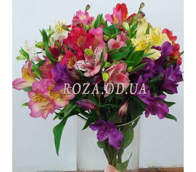 """15 alstroemeria 7"" in the online flower shop roza.od.ua"