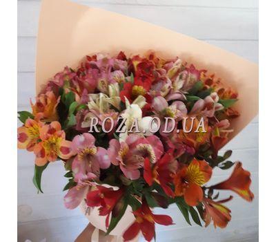 """15 alstroemeria 8"" in the online flower shop roza.od.ua"