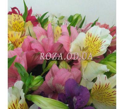 """51 Alstroemeria 2"" in the online flower shop roza.od.ua"