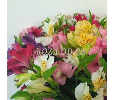 """51 Alstroemeria 4"" in the online flower shop roza.od.ua"