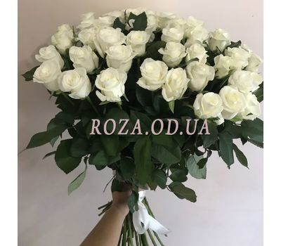 """""""51 white rose 60 cm - 2"""" in the online flower shop roza.od.ua"""