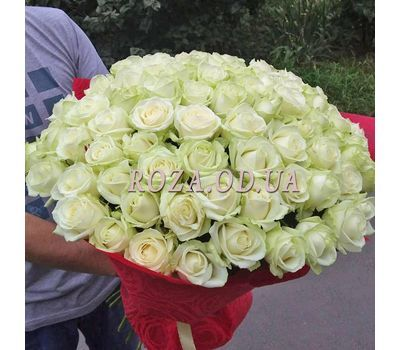 """""""75 white roses 70 cm 2"""" in the online flower shop roza.od.ua"""