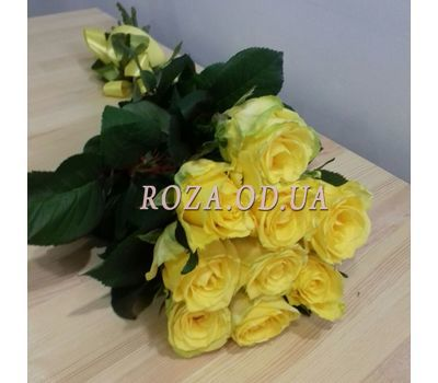 """9 yellow roses 2"" in the online flower shop roza.od.ua"