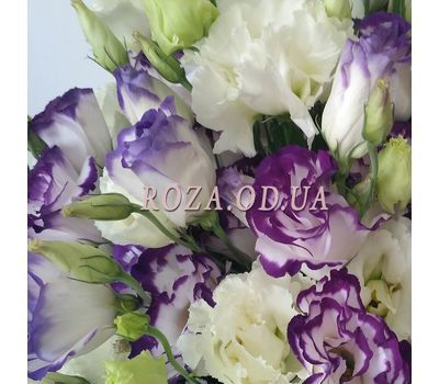 """""""Букет эустом в коробке 4"""" в интернет-магазине цветов roza.od.ua"""