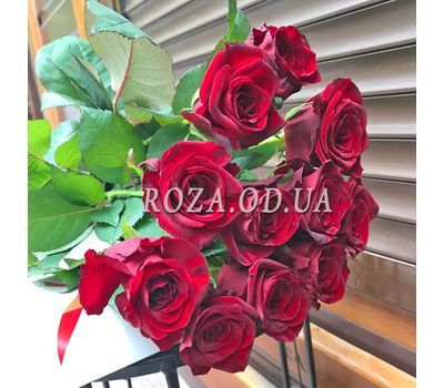 """11 roses 6"" in the online flower shop roza.od.ua"