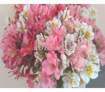 """Bouquet of 15 alstromeries 1"" in the online flower shop roza.od.ua"