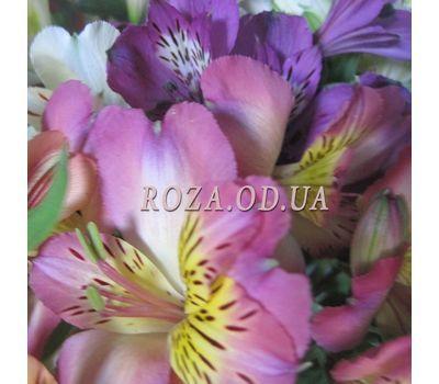 """Bouquet of 17 alstromeries 1"" in the online flower shop roza.od.ua"