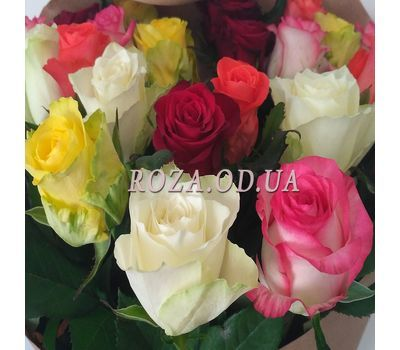 """Bouquet of 19 roses 1"" in the online flower shop roza.od.ua"