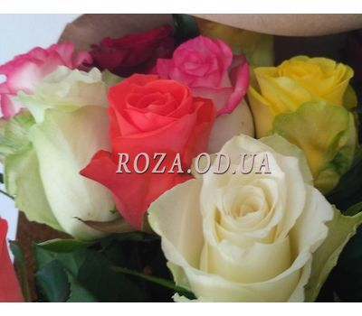 """Bouquet of 19 roses 3"" in the online flower shop roza.od.ua"