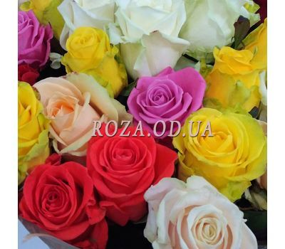 """23 roses 1"" in the online flower shop roza.od.ua"