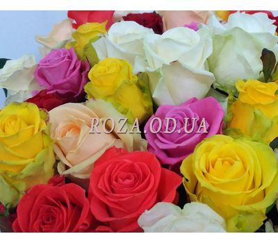 """23 roses 2"" in the online flower shop roza.od.ua"
