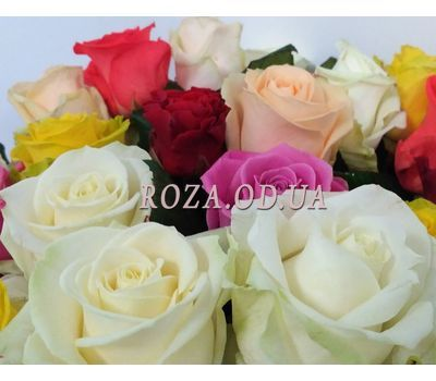 """23 roses 3"" in the online flower shop roza.od.ua"