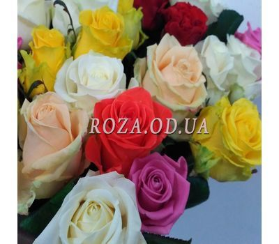 """23 roses 5"" in the online flower shop roza.od.ua"