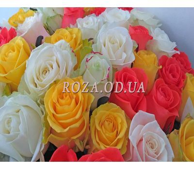 """37 multicolored roses 2"" in the online flower shop roza.od.ua"