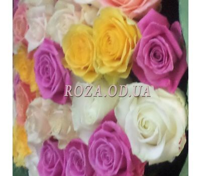 """39 roses 1"" in the online flower shop roza.od.ua"
