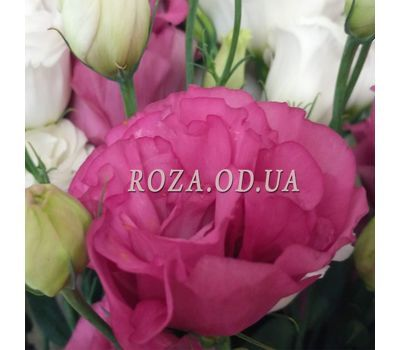 """Bouquet of wishes 4"" in the online flower shop roza.od.ua"