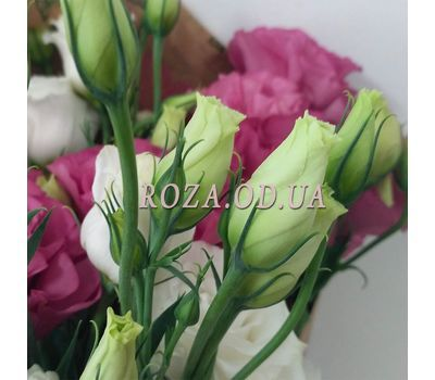 """Bouquet of wishes 6"" in the online flower shop roza.od.ua"