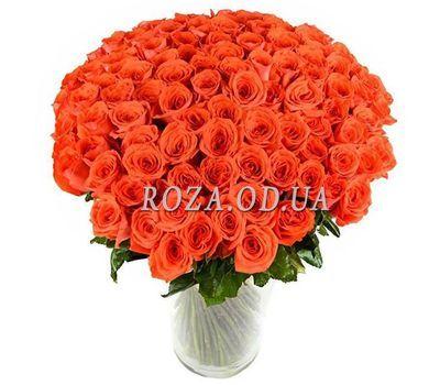 """""""101 orange rose cm"""" in the online flower shop roza.od.ua"""