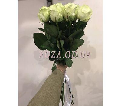 """""""11 белых роз 5"""" в интернет-магазине цветов roza.od.ua"""