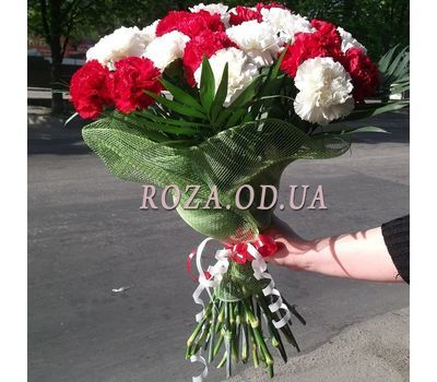 """25 white and red carnations 1"" in the online flower shop roza.od.ua"