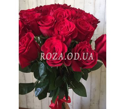 """""""25 import roses 5"""" in the online flower shop roza.od.ua"""