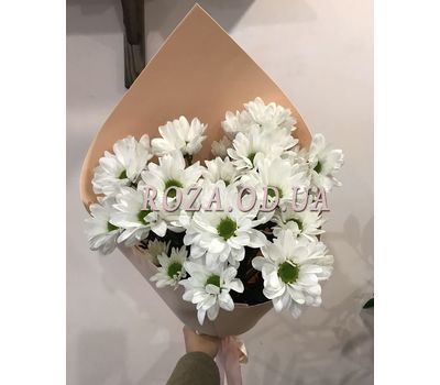 """""""3 chamomile chrysanthemums 1"""" in the online flower shop roza.od.ua"""