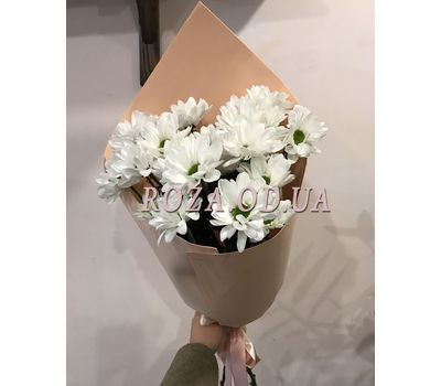 """""""3 chamomile chrysanthemums 2"""" in the online flower shop roza.od.ua"""