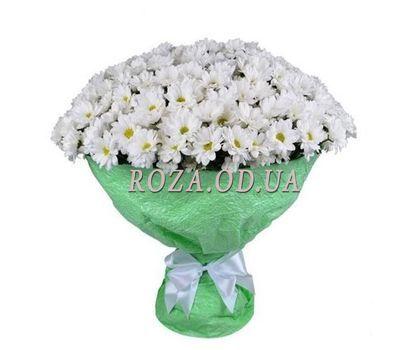 """51 Chamomile Chrysanthemum"" in the online flower shop roza.od.ua"