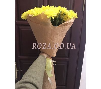 """""""9 chamomile chrysanthemums 1"""" in the online flower shop roza.od.ua"""