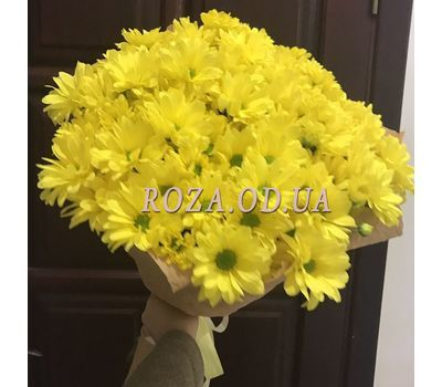 """""""9 chamomile chrysanthemums 2"""" in the online flower shop roza.od.ua"""