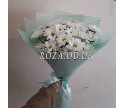 """""""Bouquet of 7 chamomiles 3"""" in the online flower shop roza.od.ua"""