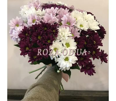 """Multicolored chrysanthemums 1"" in the online flower shop roza.od.ua"