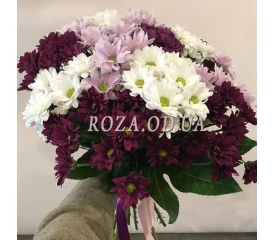"""Multicolored chrysanthemums 2"" in the online flower shop roza.od.ua"
