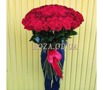 """""""101 imported rose 1m 3"""" in the online flower shop roza.od.ua"""
