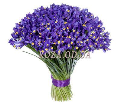 """101 iris"" in the online flower shop roza.od.ua"