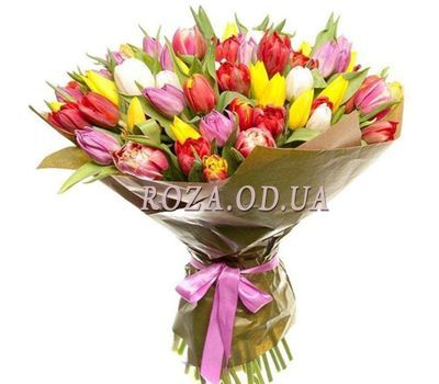 """""""45 colorful tulips 1"""" in the online flower shop roza.od.ua"""