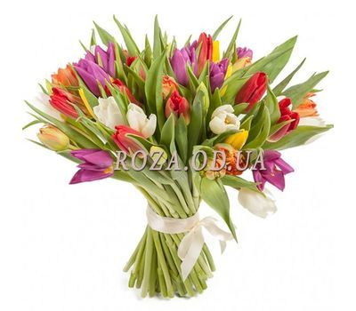 """""""45 colorful tulips"""" in the online flower shop roza.od.ua"""